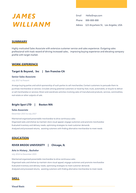 Resume Template Attractive